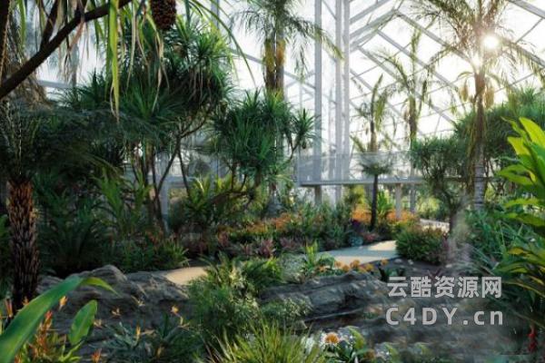 花园植物,花园场景,植物合集,模型,(3DS MAX格式)C4D模型,云酷网c4d