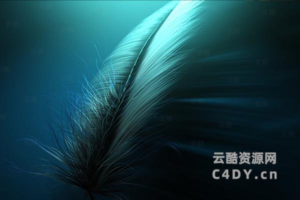 精品羽毛 羽毛3D模型C4D模型工程文件-云酷网c4d