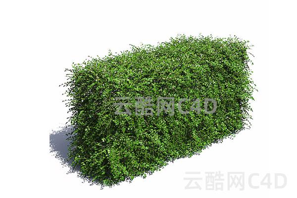 青草堆-室外草堆,C4D模型-云酷网c4d